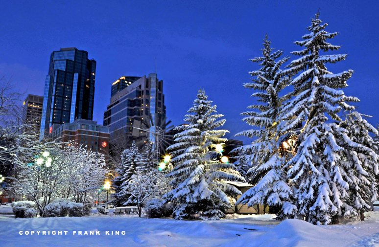 website-calgary-snow1