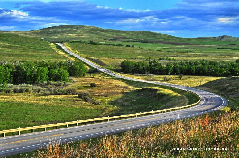 Road google1