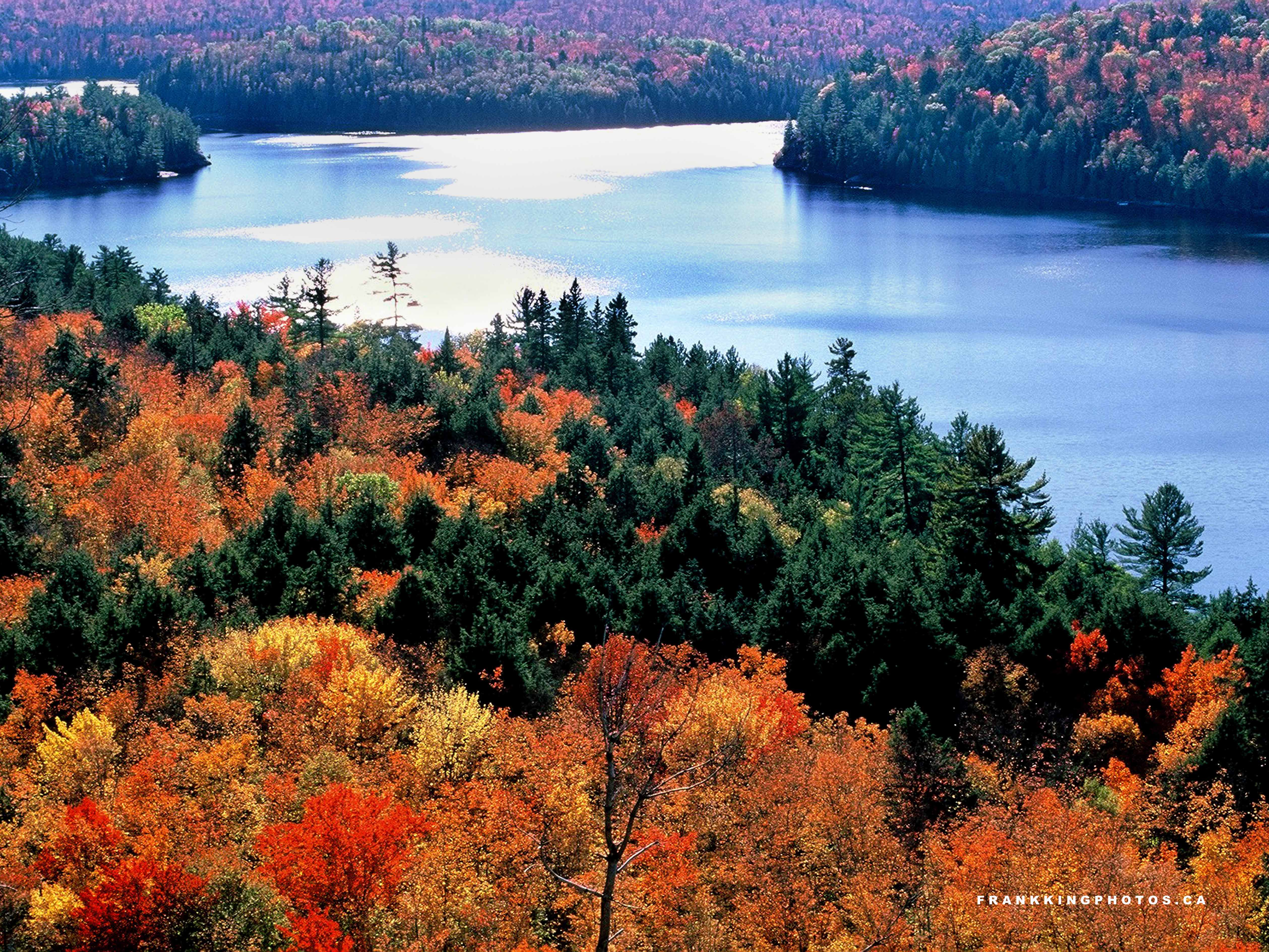 Natural landscapes autumn at rock lake frank king photos for Landscaping rocks canada