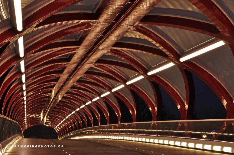 3. bridgeweb4
