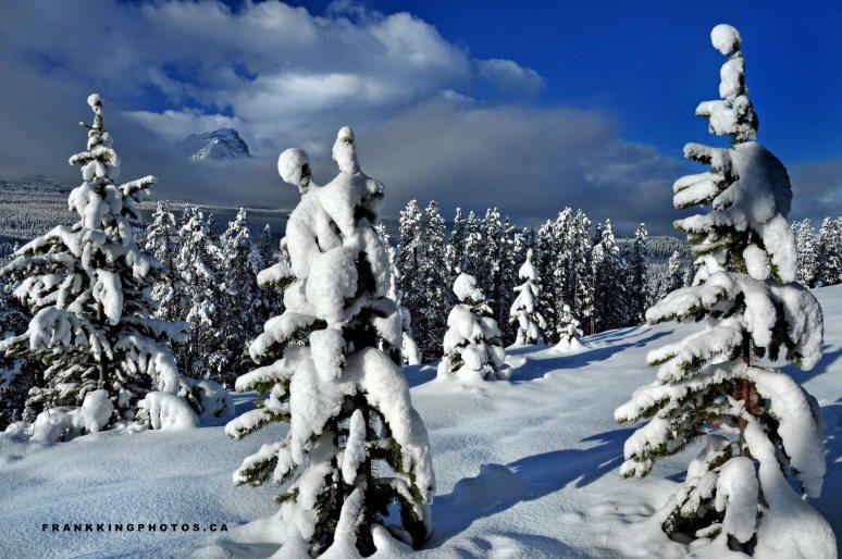 SnowMtnsWeb1