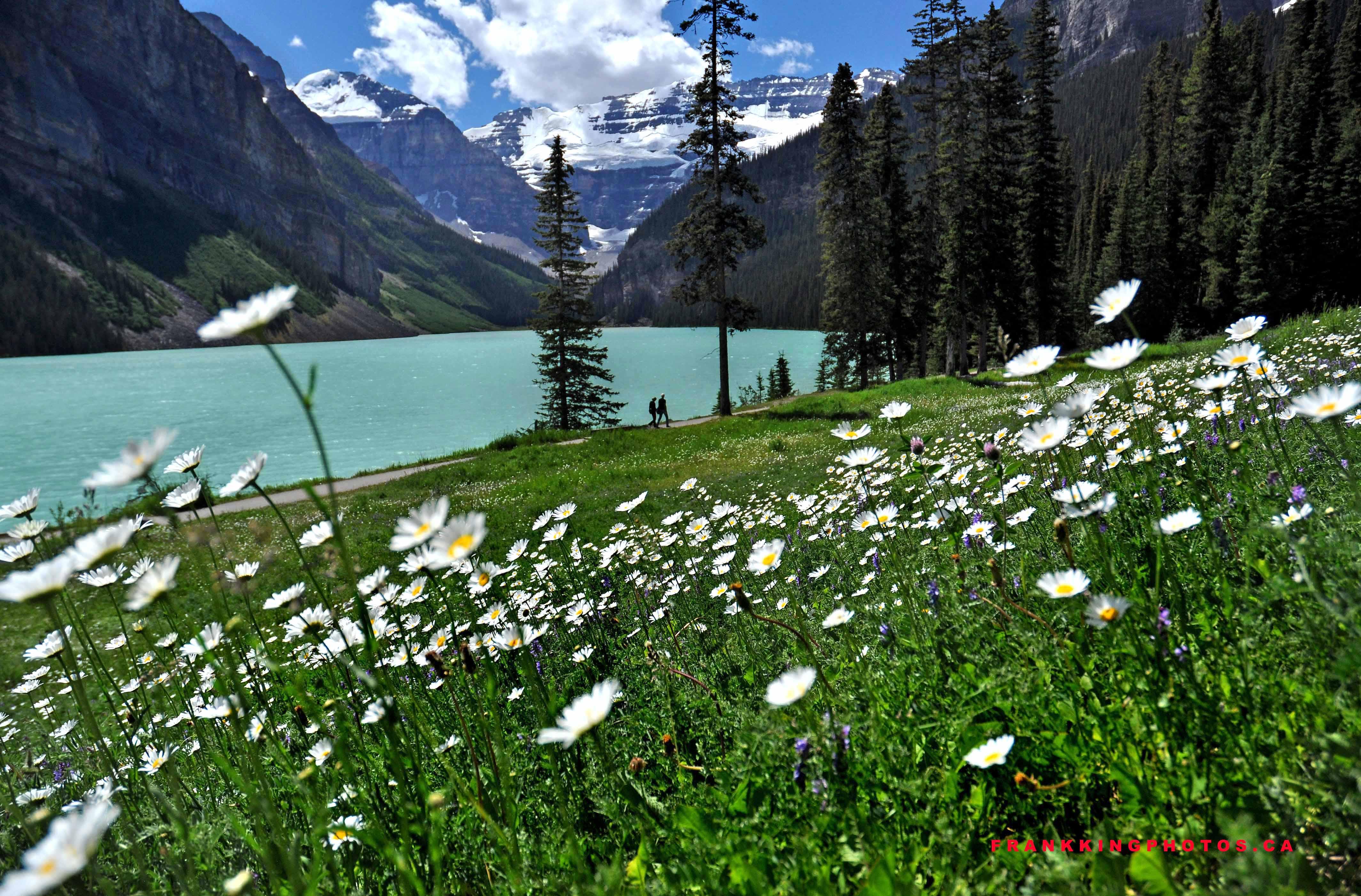 sweet photography bloomington indiana 2U75F