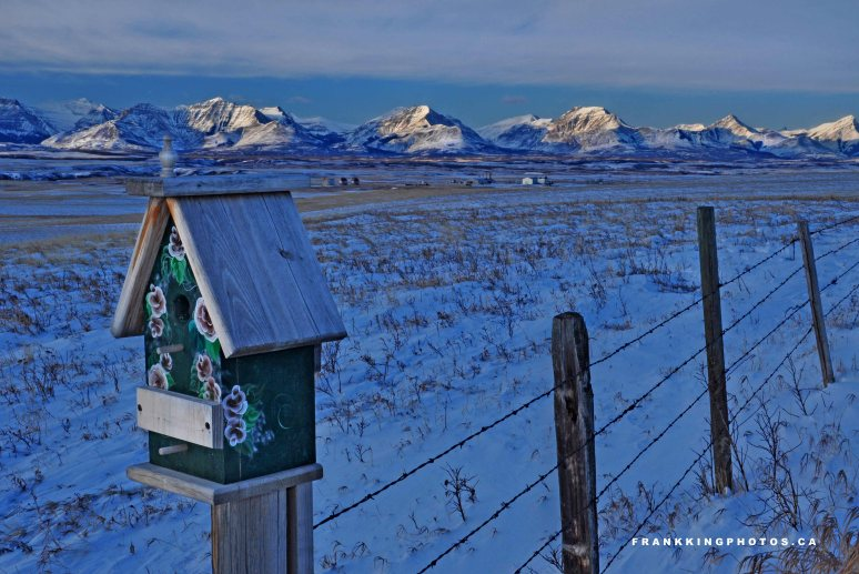 Twin Butte birdhouse