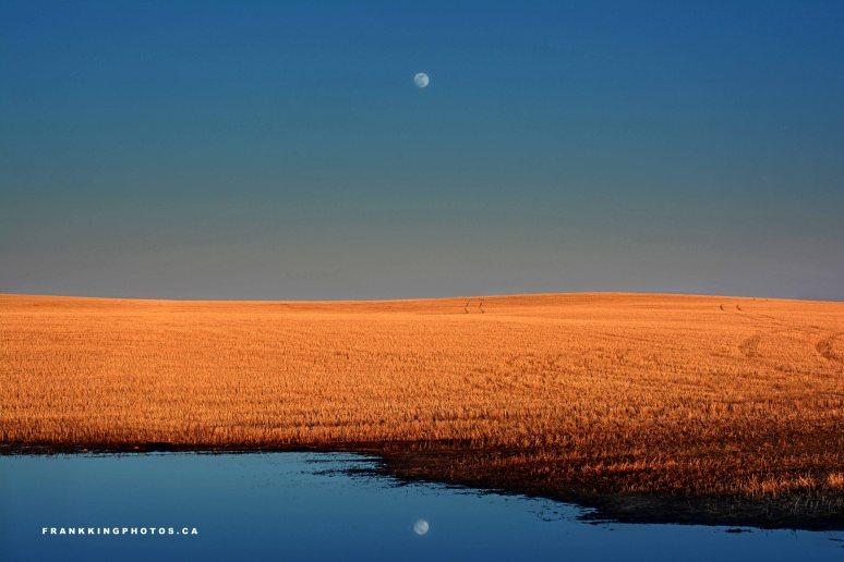 Moonrise Alberta prairies