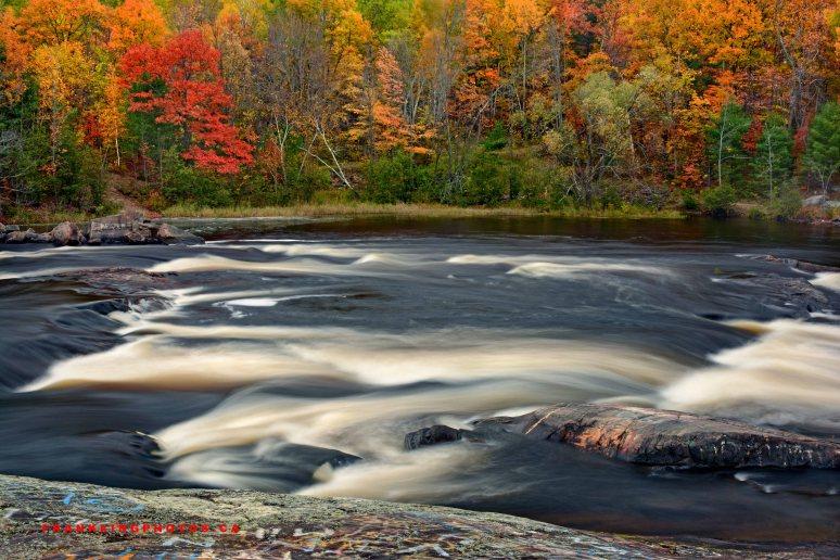 Petawawa River autumn