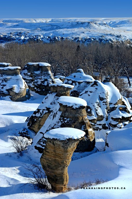 Hoodoos winter Canada snow