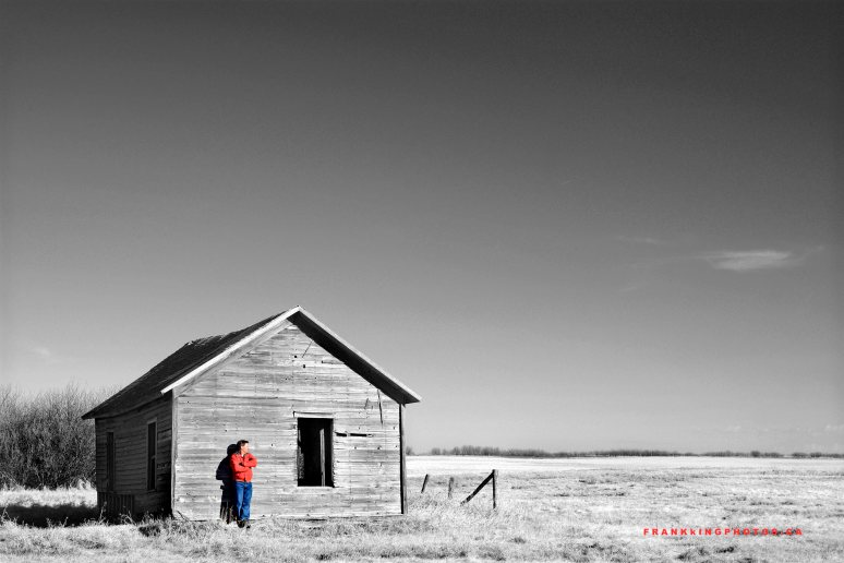 Prairies Canada Alberta spring black and white