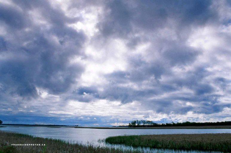 Presquile Bay Ontario scenery