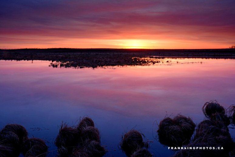 Sunrise pond Canada