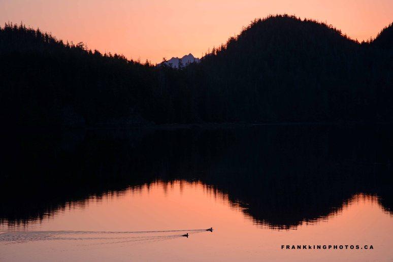 Pacific Rim Canada dawn