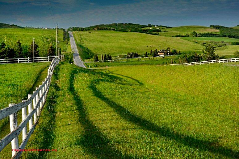 Spring farmland Canada Alberta