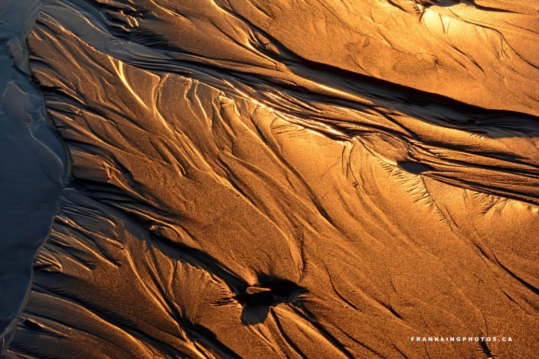 Tofino beach sand evening gold light Canada