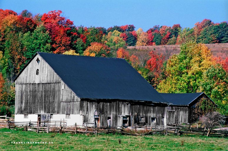 Barn Ontario Owen Sound autumn Canada