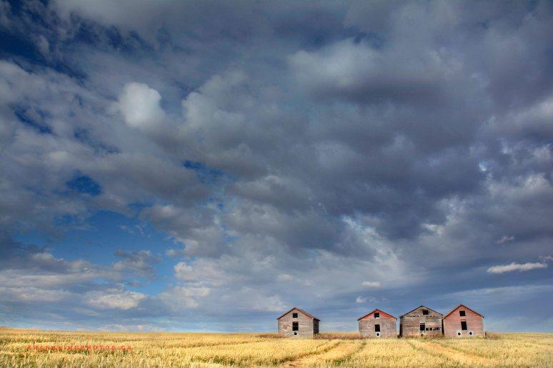 prairies Canada dark sky Airdrie