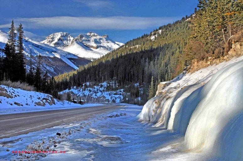 icefieldsparkwayweb1
