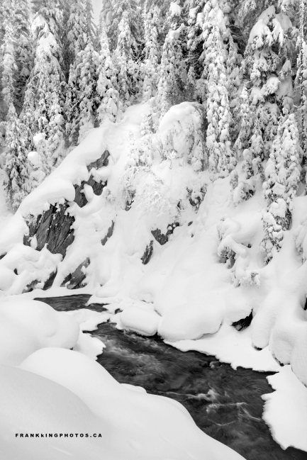 Canada winter Rockies snow stream