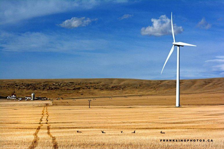 Alberta prairies Canada wind turbine