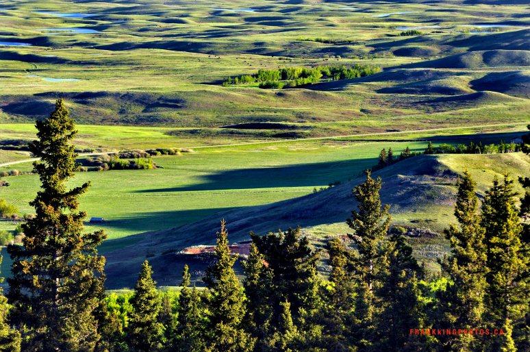 Cypress Hills Alberta Canada sunrise
