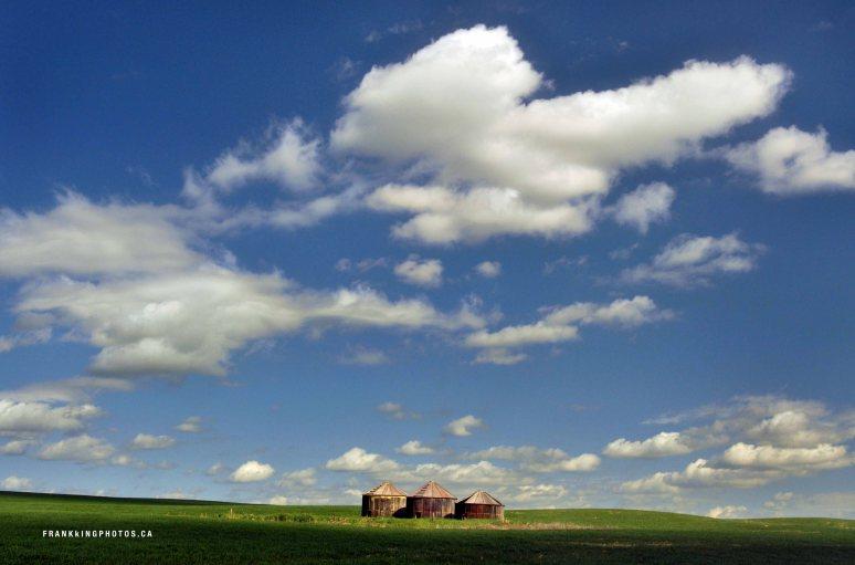 Airdrie grain bins Alberta prairies