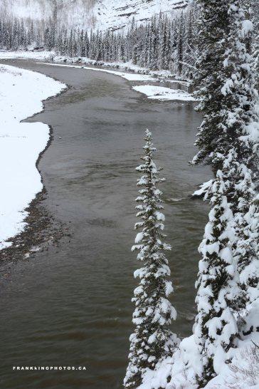 snow Kananaskis Alberta Canada