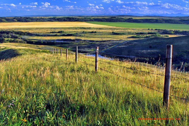 Glenbow Ranch Alberta prairies summer