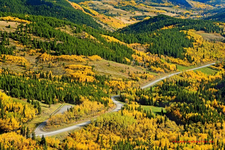 autumn Canada Alberta