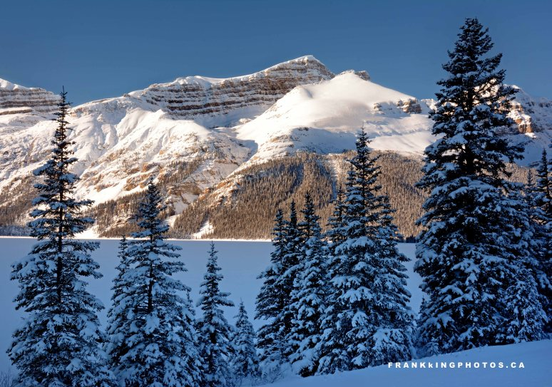 snowy mountains winter canada Rockies