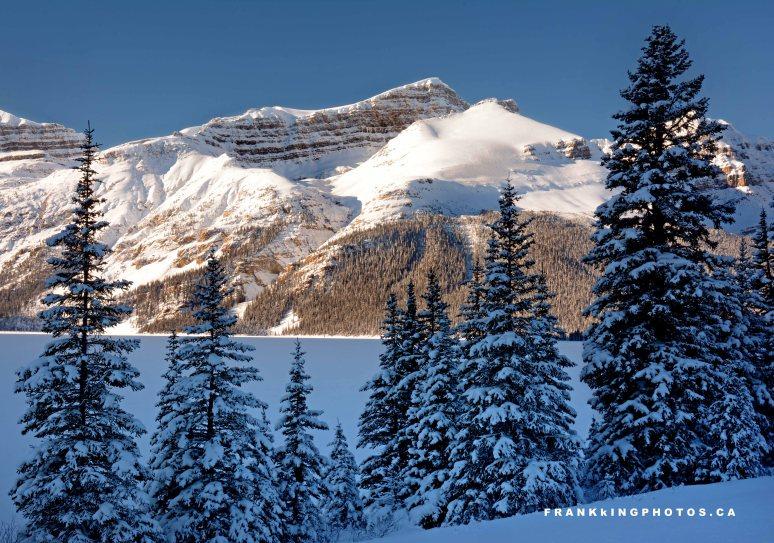 snowy mountains winter canada Rockies