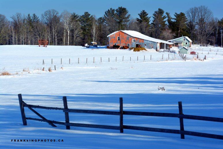 winter farm snowy farm Canada Ontario