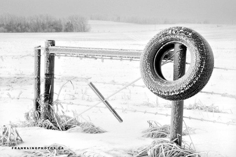 Canada prairies winter