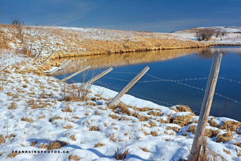 slugh spring snow Alberta pond