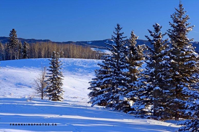 snow hills Alberta winter Canada